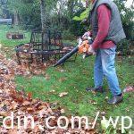 Autumn leaf clearing_1
