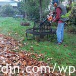 Autumn leaf clearing_2