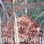 Autumn leaf container