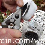 Opening cartridge with secateurs