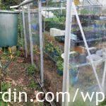 Re-glazed greenhouse at La Rabine_2